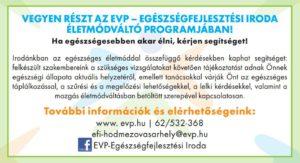 vasarhely-eletmodvalto-program